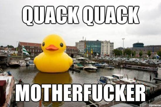 quack-quack-motherfucker